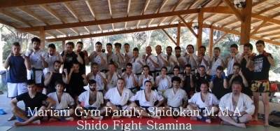 Stage Black Belt Shido Fight Stamina